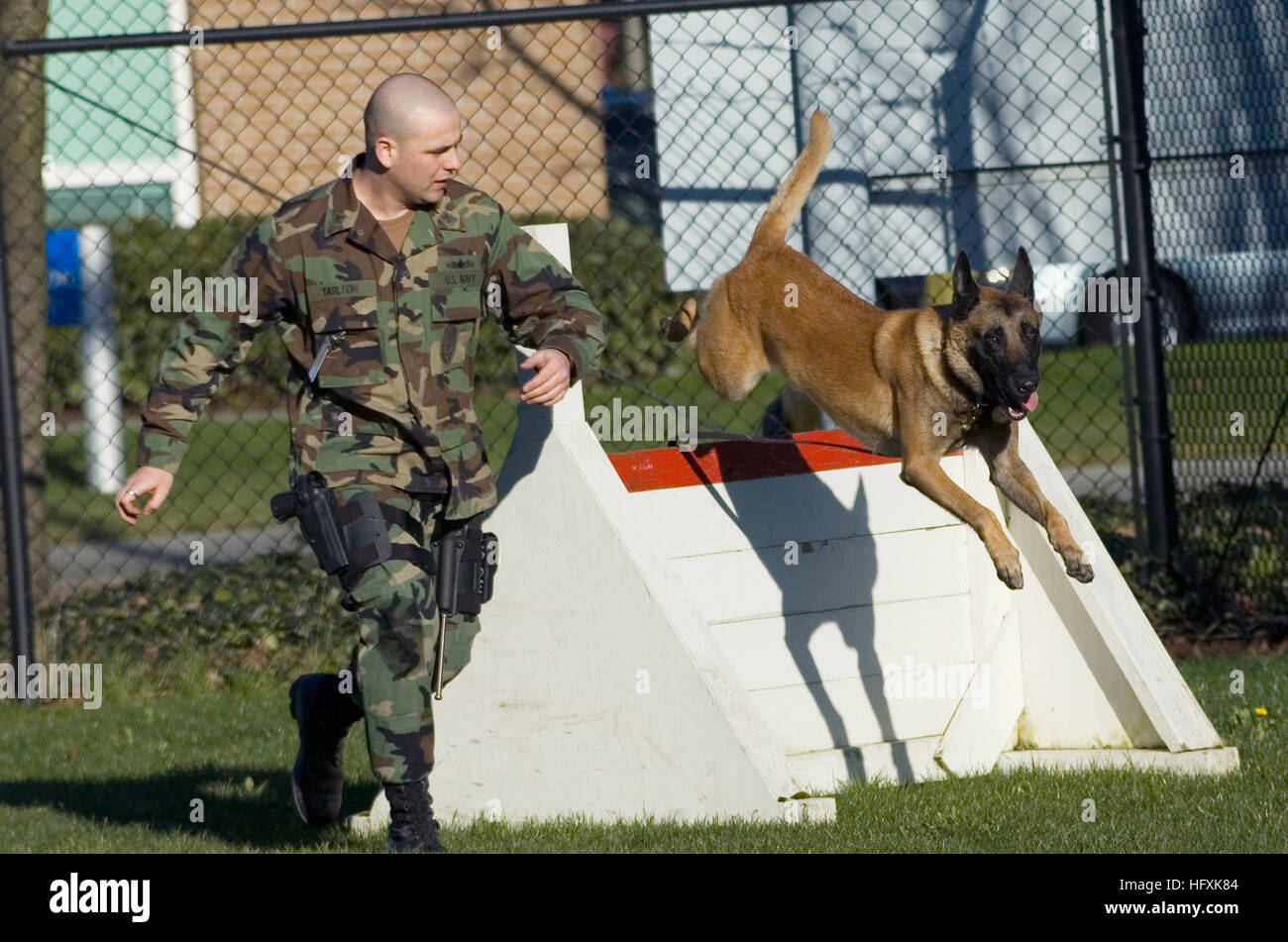 060208-n-3390m-021 everett, Wash. (feb 8, 2005) - U.s. Navy Dog ...