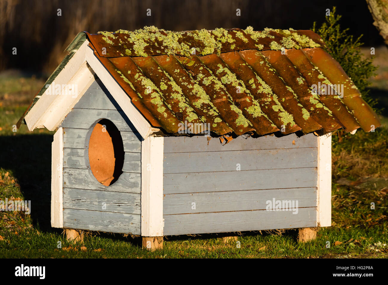 Small Doghouse With Circular Hole And Lichen Growing On The Roof. It Looks  Old And Weathered.