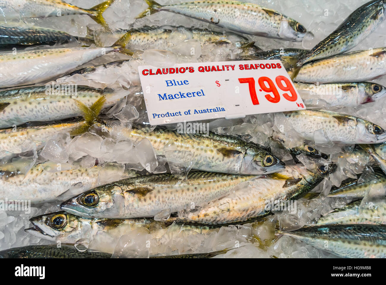 how to get sydney fish market