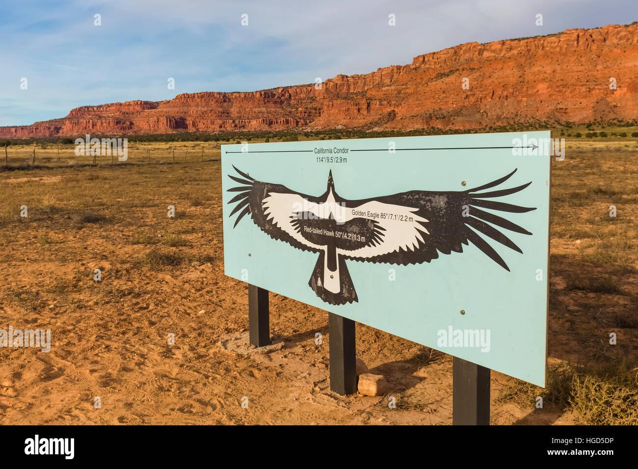 Sign showing size comparison of California Condor, Gymnogyps Stock ...