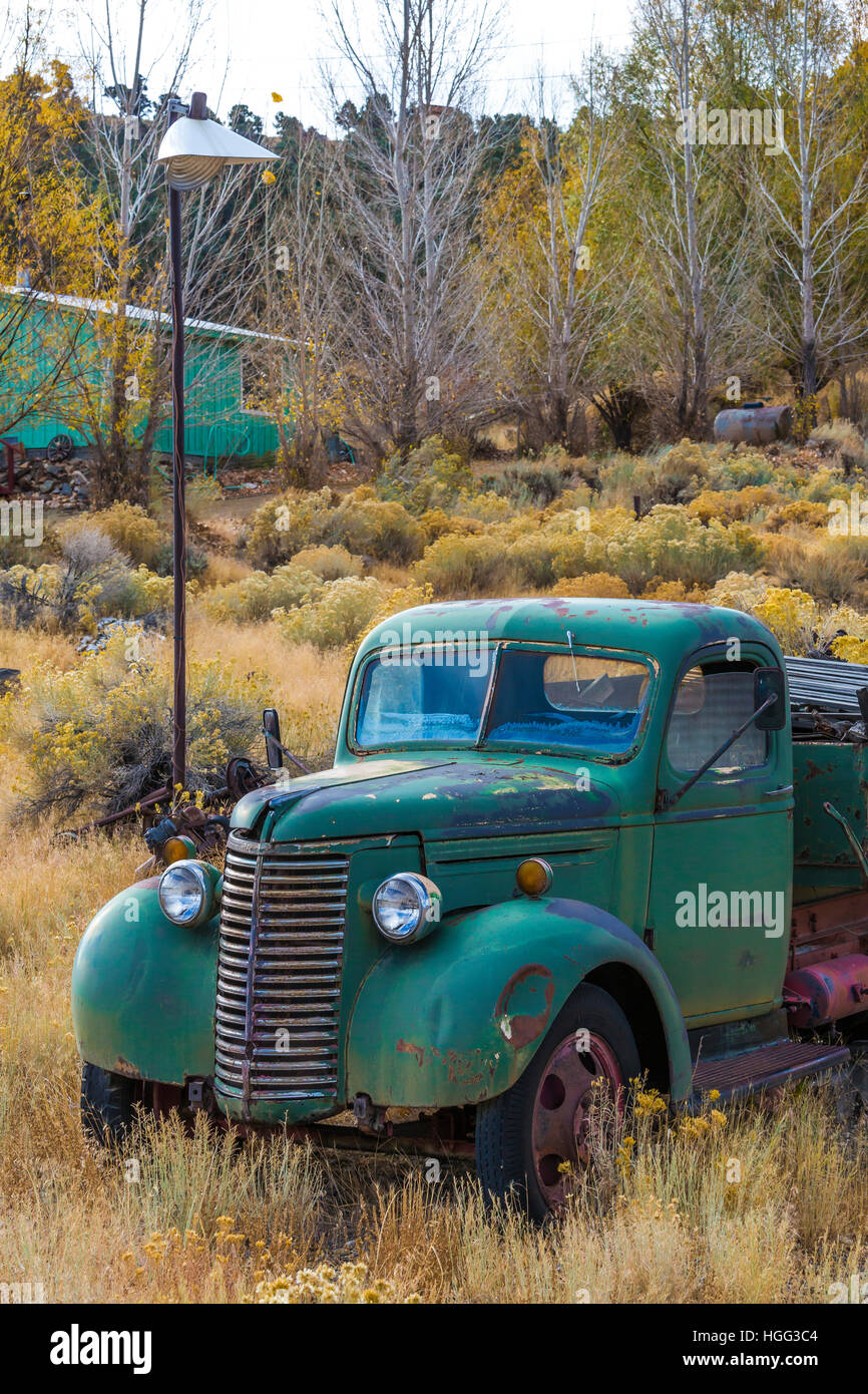 1949 Chevrolet pickup truck in the old silver and gold mining semi ...