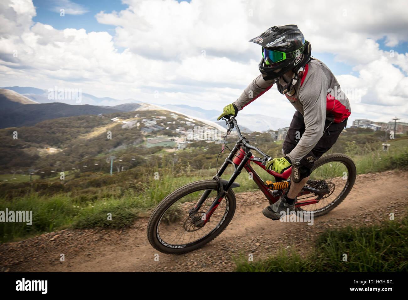 Mountain Bike Riders At Mt Buller Stock Photo Royalty Free Image