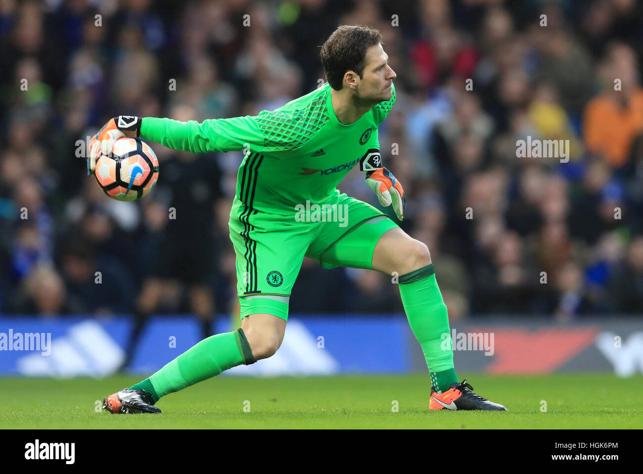 Chelsea goalkeeper Asmir Begovic Stock Royalty Free Image