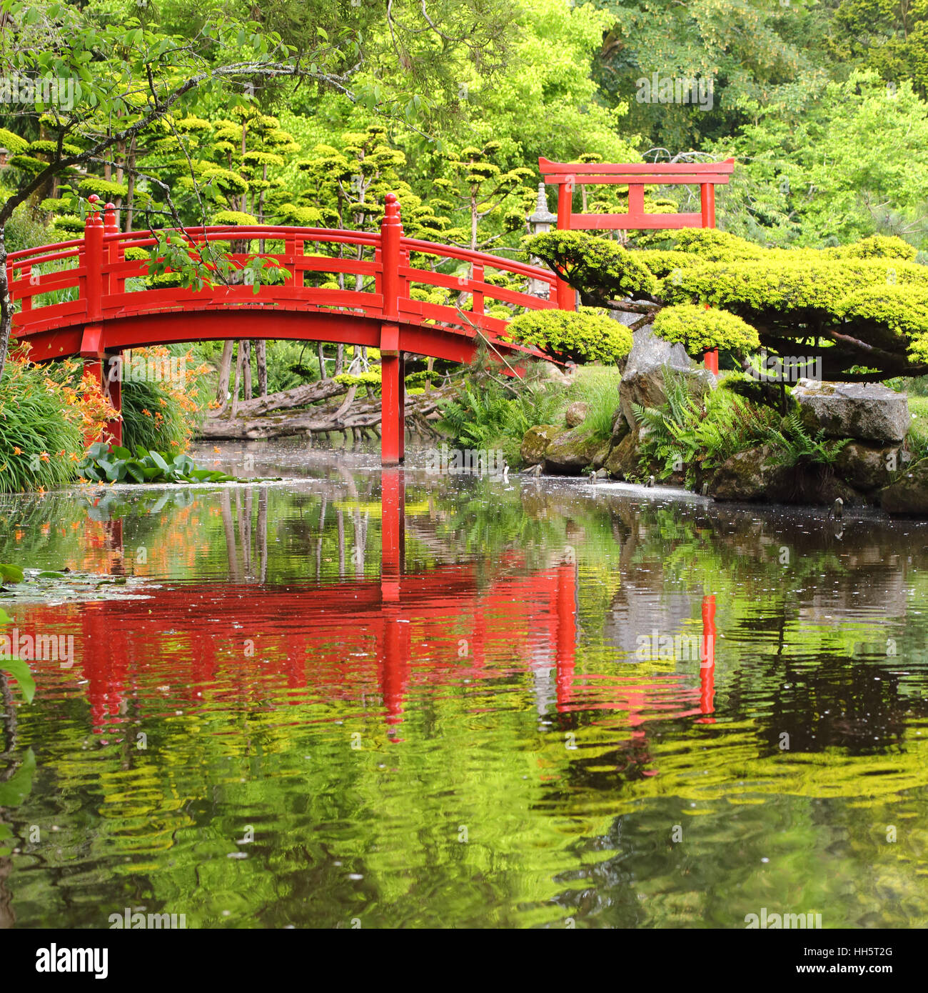 red bridge over water in japanese garden stock photo
