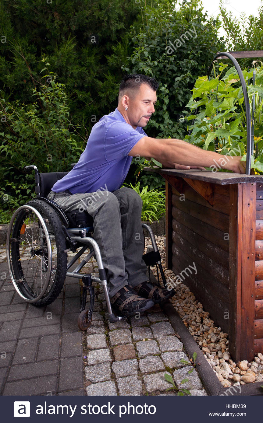 Wheelchair gardening hampered disability handicap man for Garden design for disabled