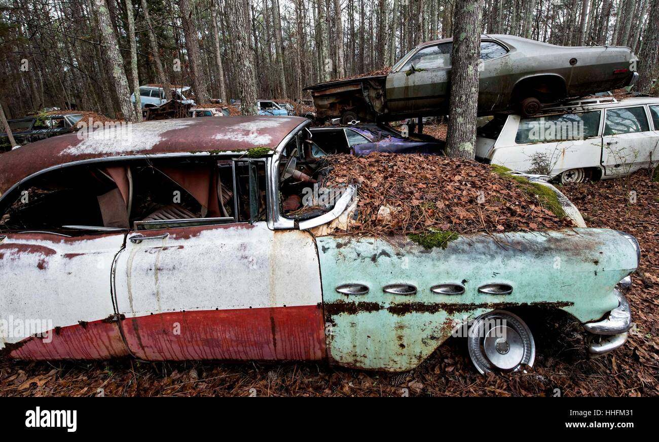 White, USA. 18th Jan, 2017. Old Car City USA, a classic car junkyard ...