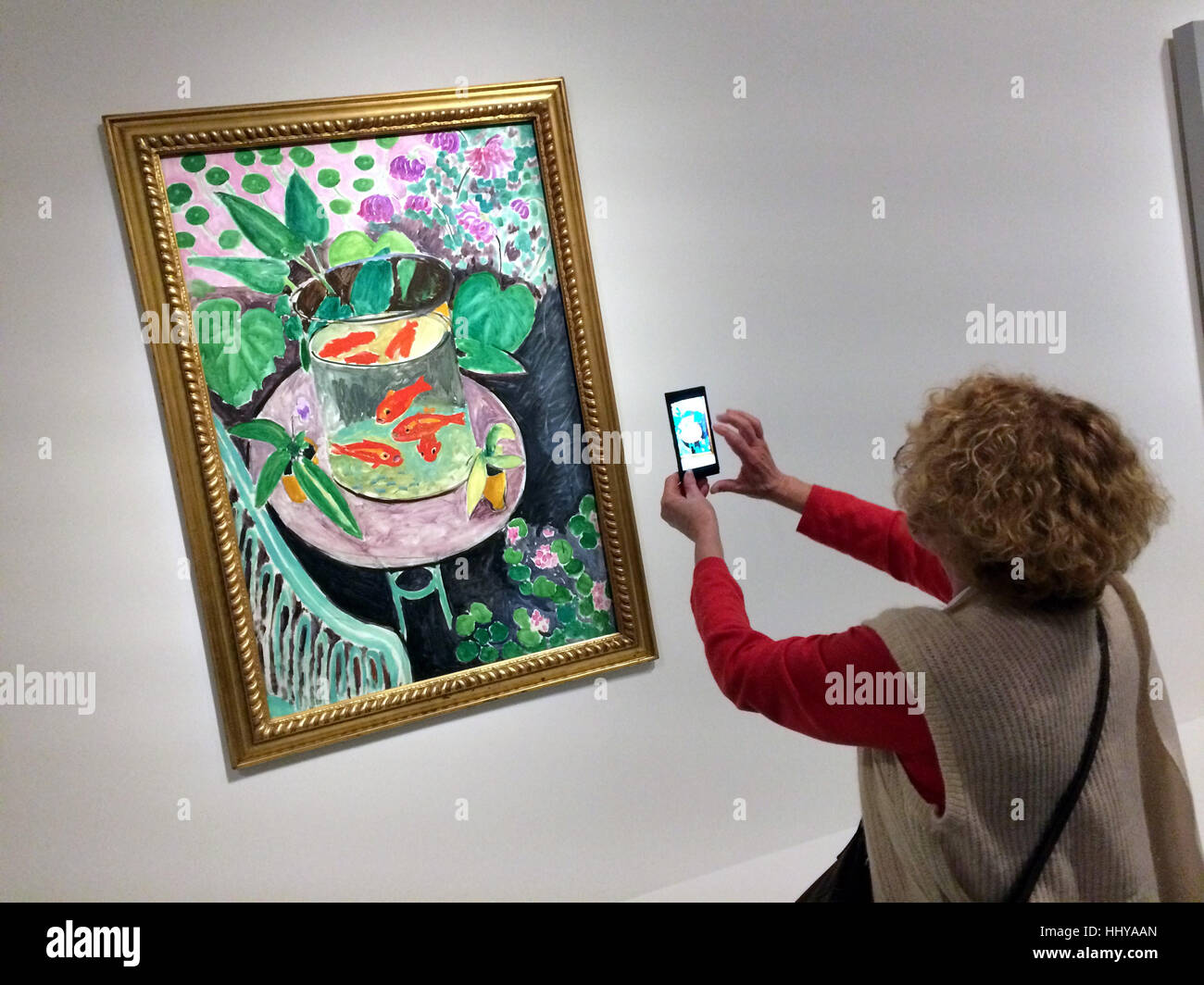 stock photo visitor uses a smartphone to photograph the painting the goldfish by french painter henri matisse displayed at the exhibition icons of