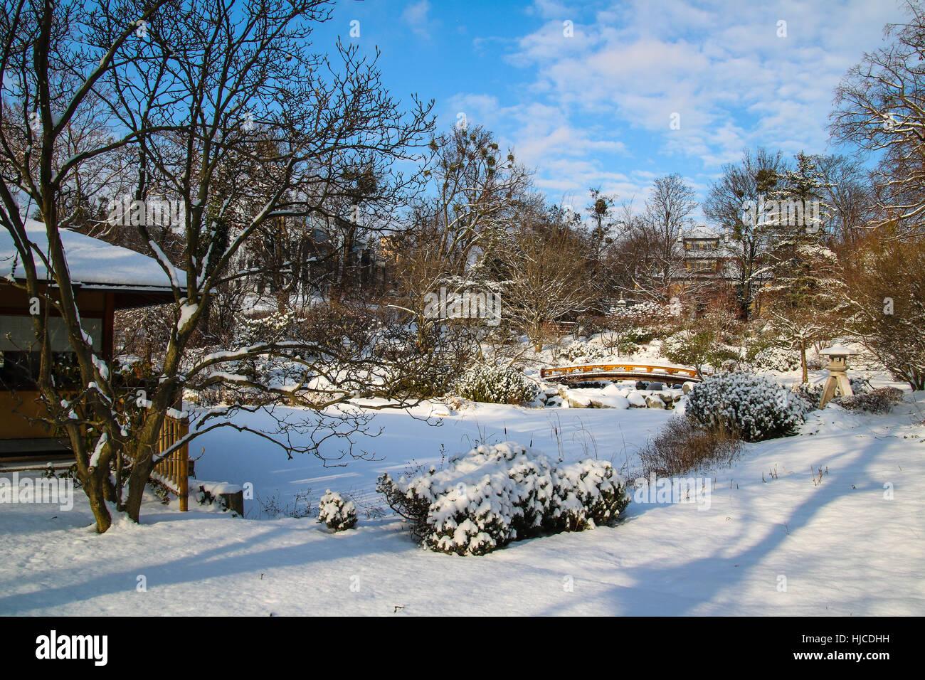 setagaya park vienna a japanese garden in winter stock photo