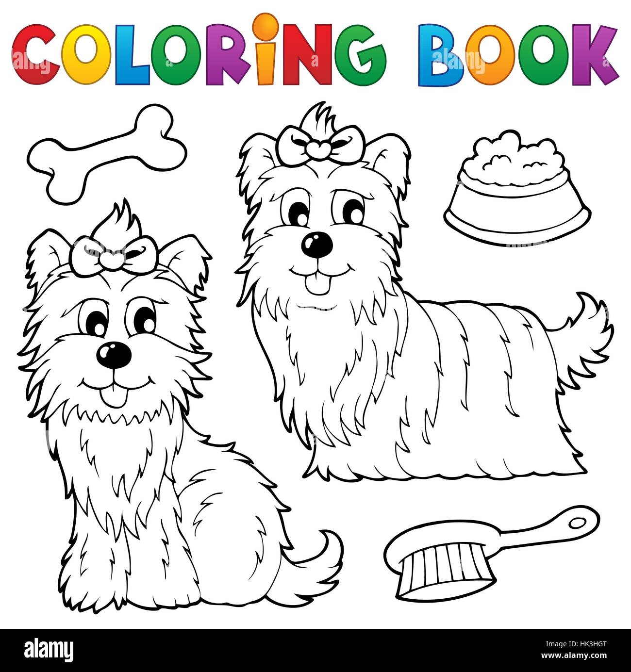 art colour graphic animal pet mammal playful animals pets look - Pictures Of Animals To Colour In