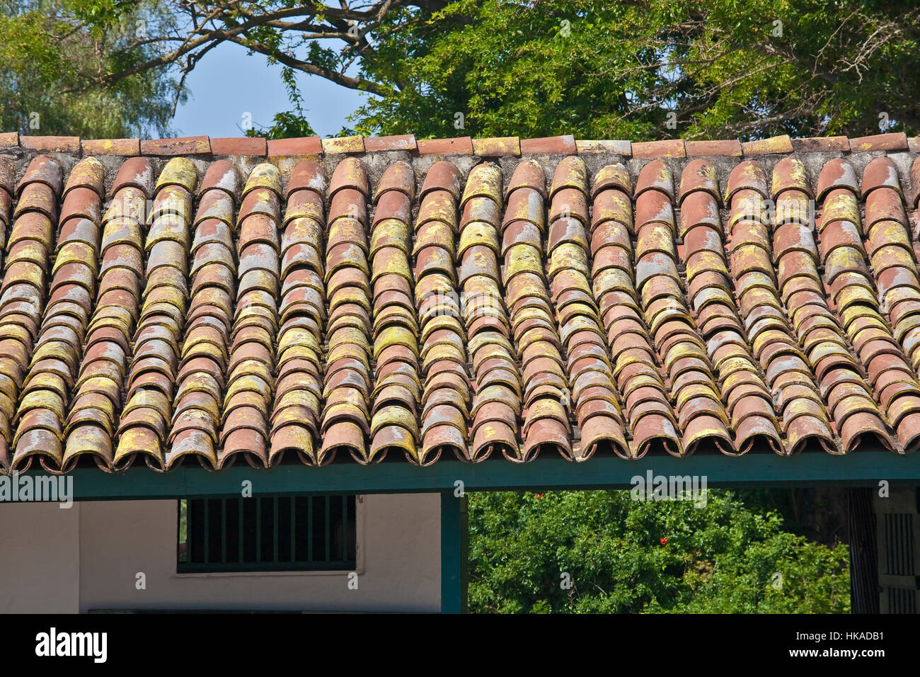 Mildew on clay roofing tiles of guajome adobe county park for Buy clay roof tiles online