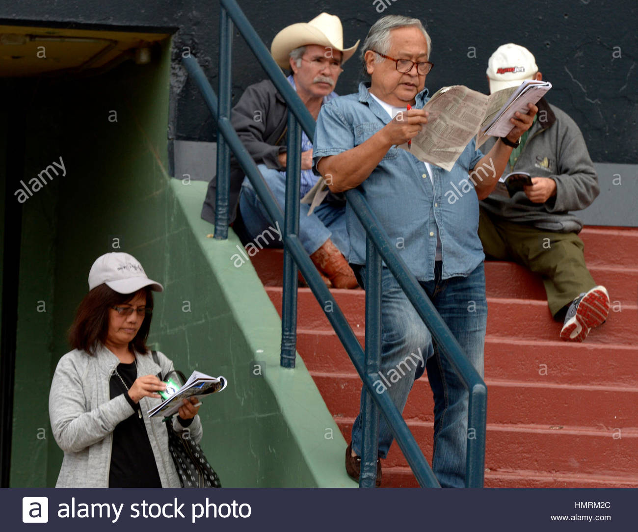 Arcadia, USA. 4th Feb, 2017. Horse racing fans look over the ...
