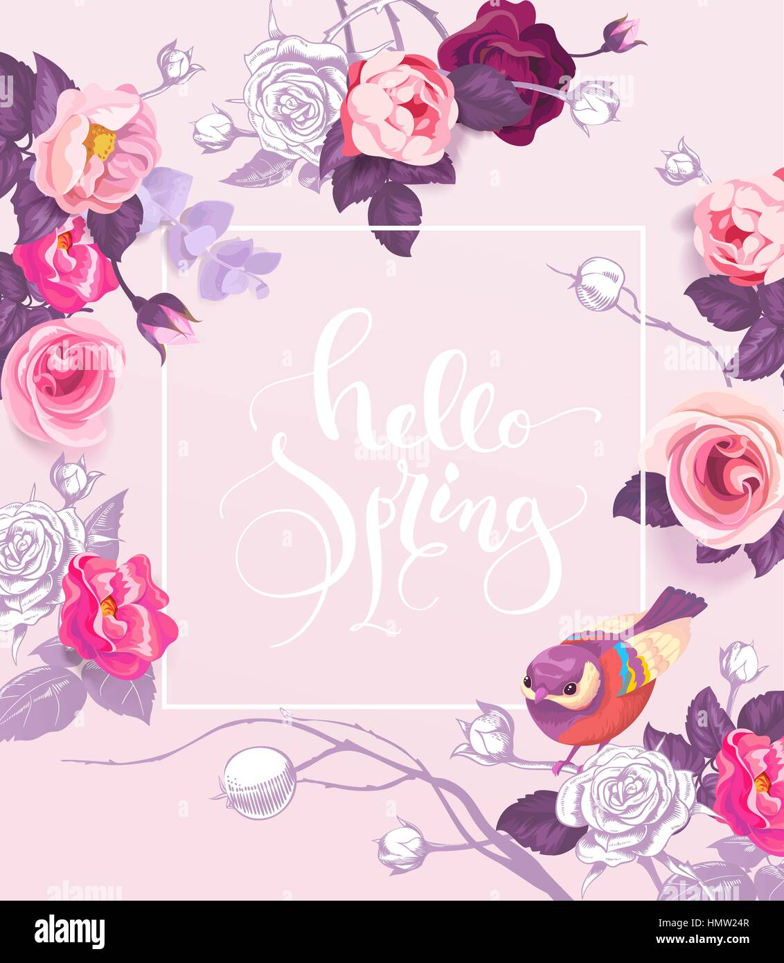 Superbe Greeting Card With Elegant Hand Written Lettering Hello Spring. Cute Little  Bird, And Roses