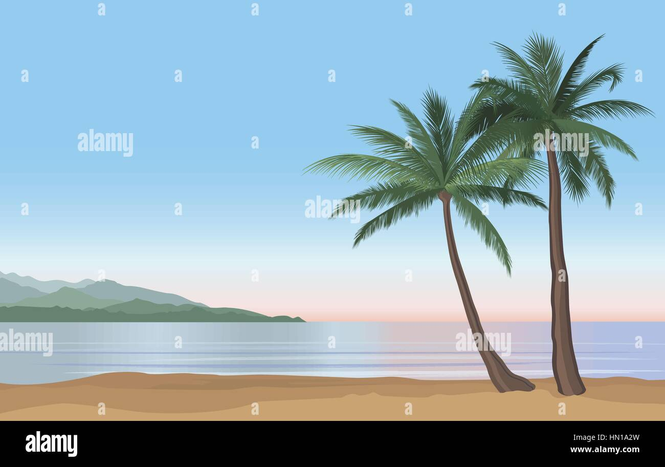 Palm Tree On The Ocean Beach Nature Floral Landscape Tropical Resort Skyline Summer Holidays Background Seaside Sunrise View Poster Vector