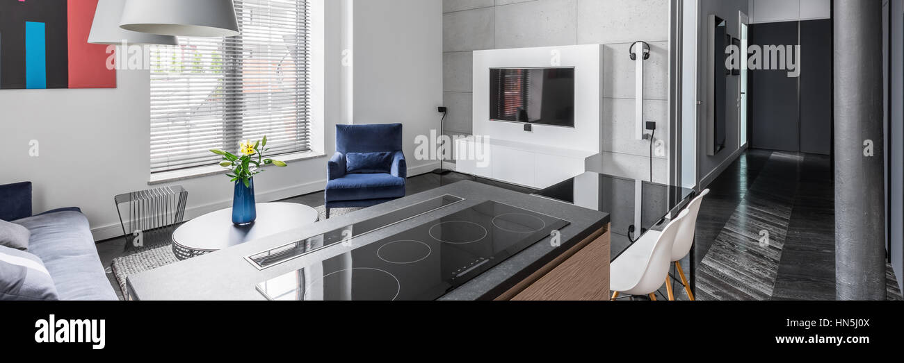 Bright And Modern Apartment Interior With Grey Wall Tiles, Kitchen Worktop,  Television, And Big Window, Panorama