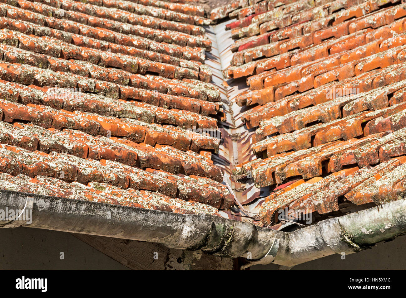 Close up of neglected lichen covered clay roof tiles and for Buy clay roof tiles online