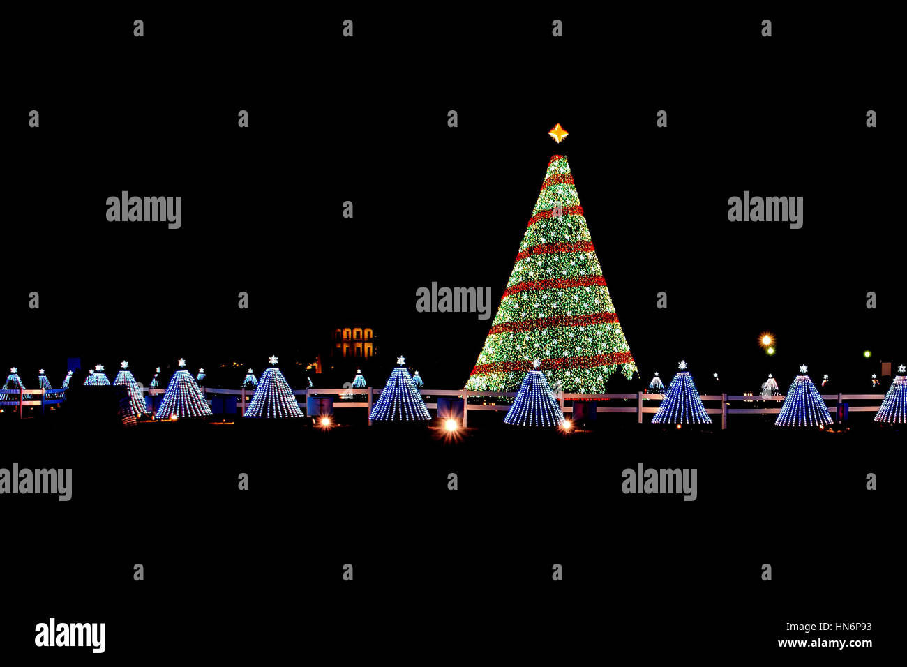 illuminated christmas tree lights at night with 50 small trees representing each state at national mall in washington dc in 2014