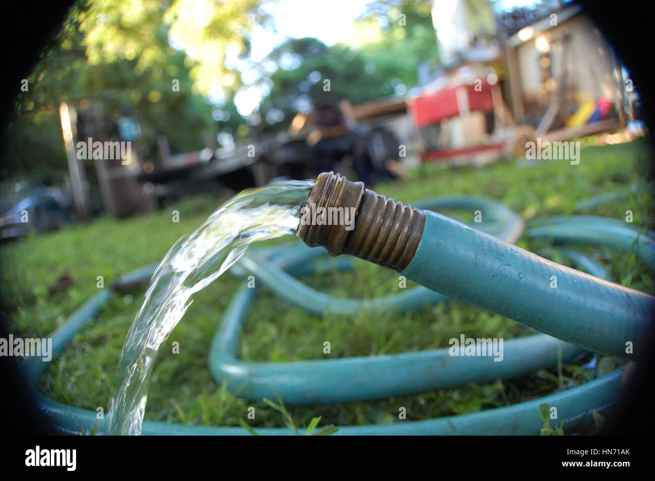 Stock Photo   Water Flowing From A Garden Hose Left Unattended On A Hot  Summer Day In The Backyard