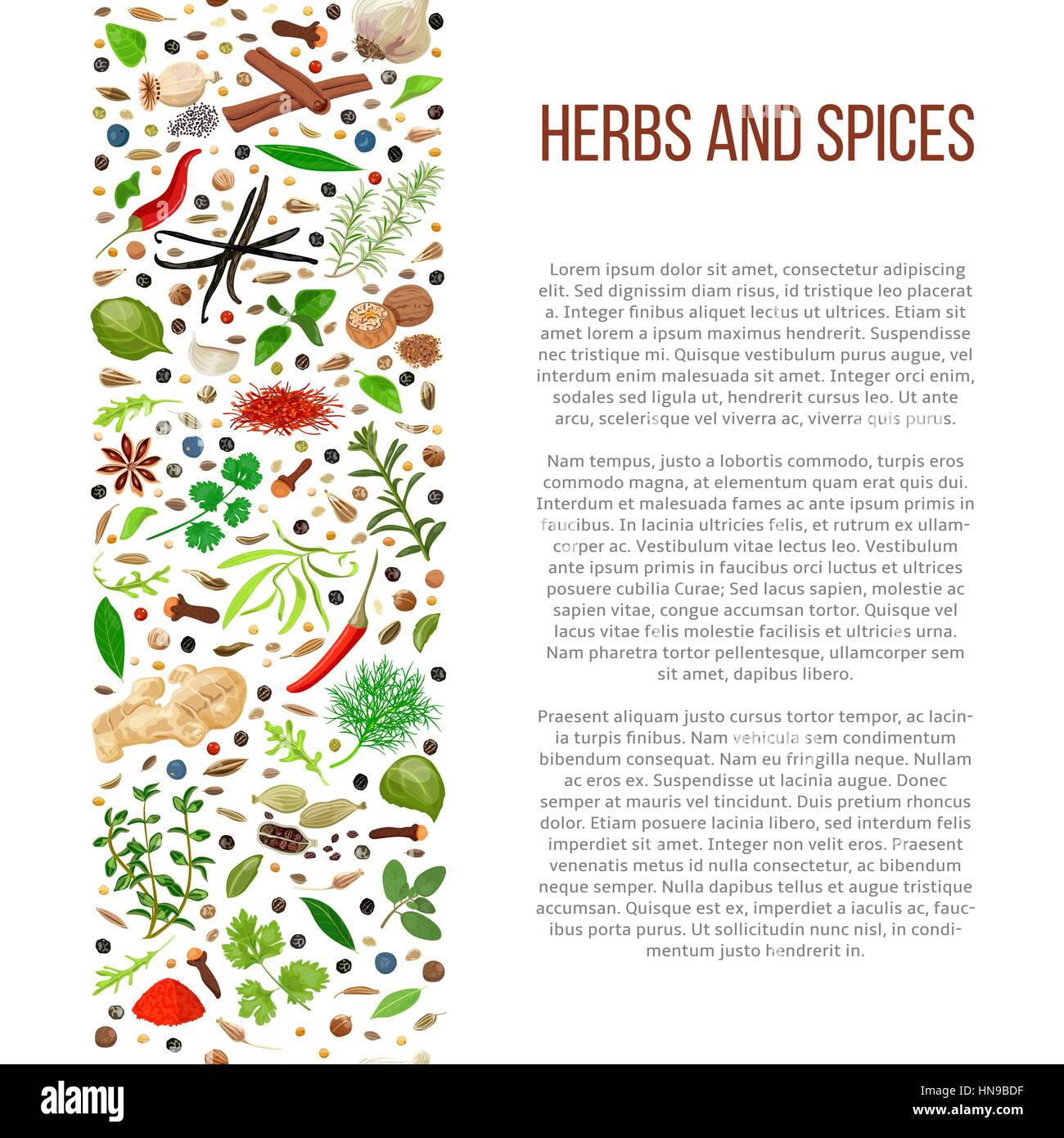 Poster design description - Popular Culinary Herbs And Spices Set In Column With Description Benefits Of Cooking Spices In Informative Poster With Text Design For Cosmetics