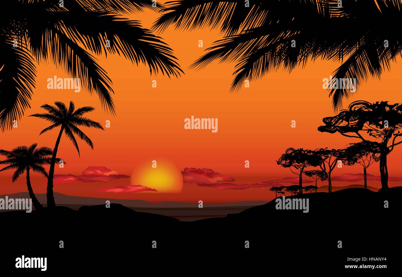 African Landscape With Palm Trees Silhouette Savanna Sunset Background
