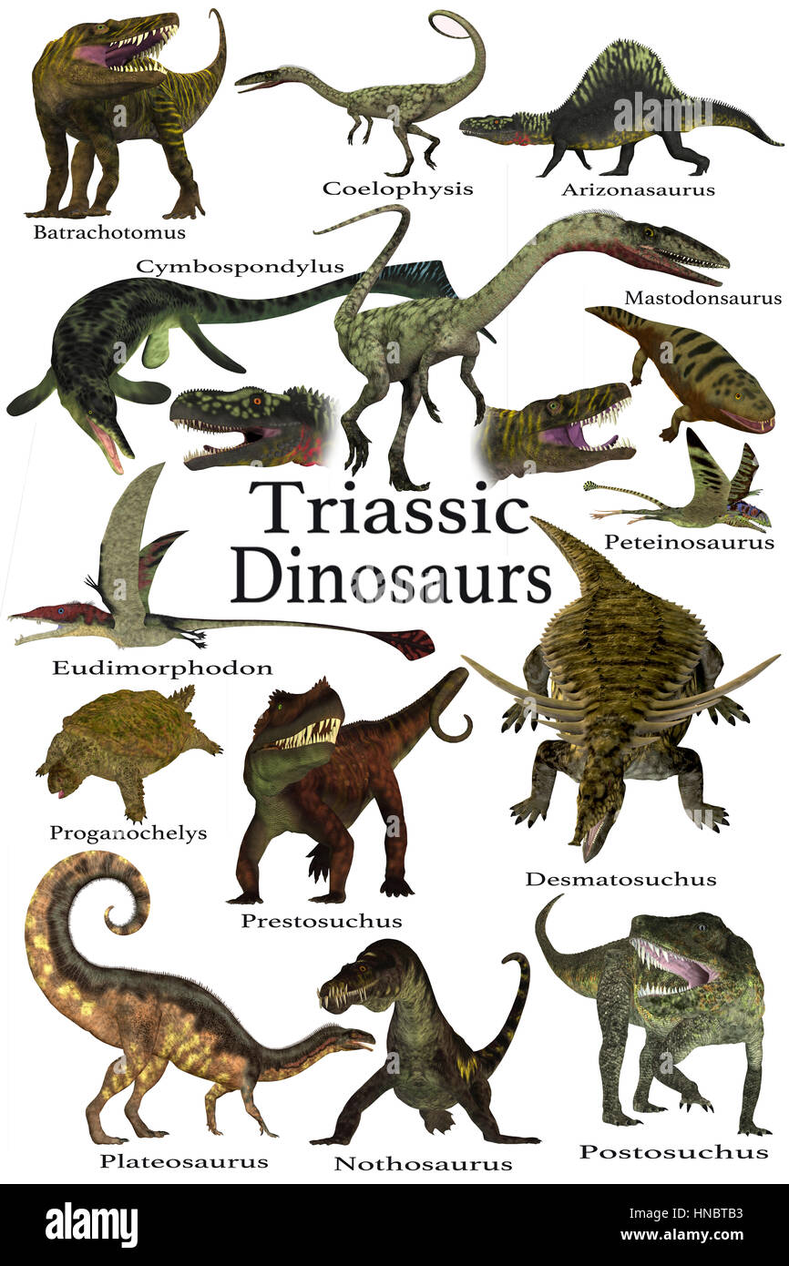 Triassic Animals List Triassic Period Dinosa...