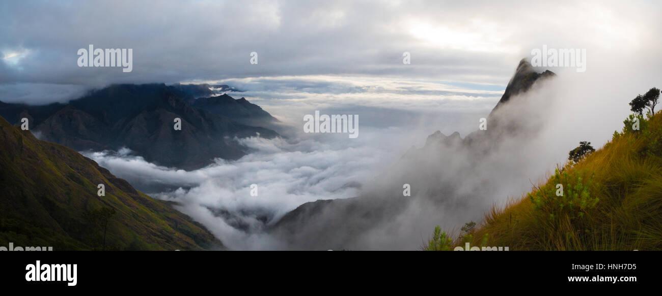 misty mountain kerala