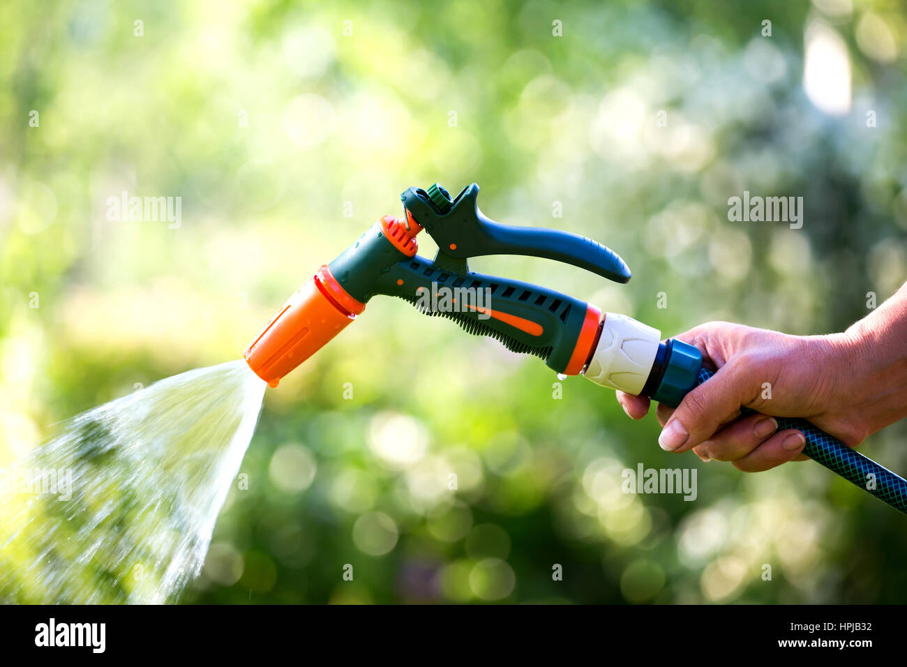 Stock Photo   Woman Hand Holding Garden Hose With Sprayer Nozzle Watering  Lawn