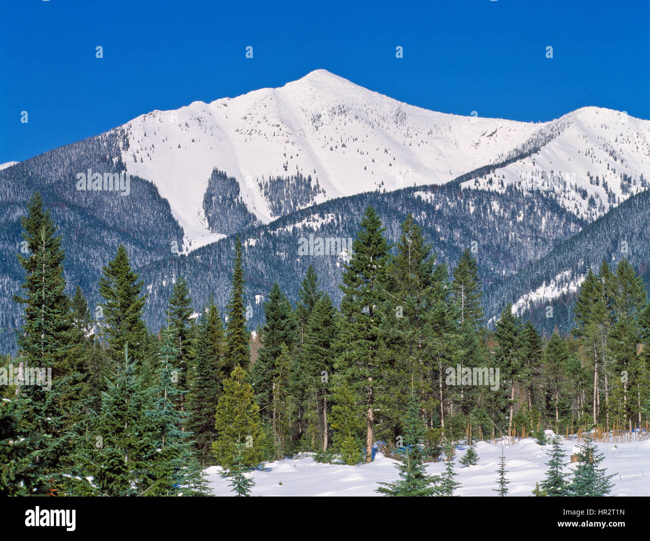 Pyramid peak in winter in the swan range near seeley lake montana stock image