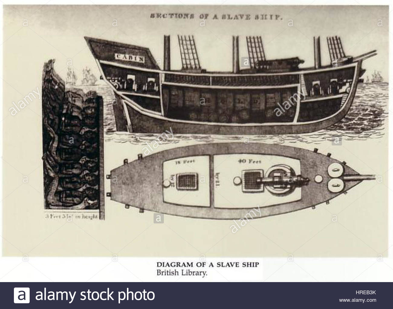 Diagram of a slave ship stock photo 134925719 alamy diagram of a slave ship pooptronica Images