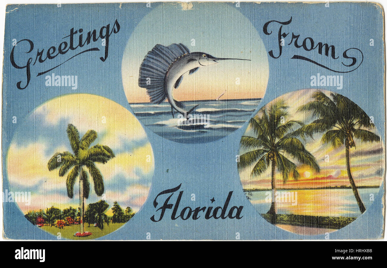Greetings from florida stock photo 135003551 alamy greetings from florida kristyandbryce Image collections