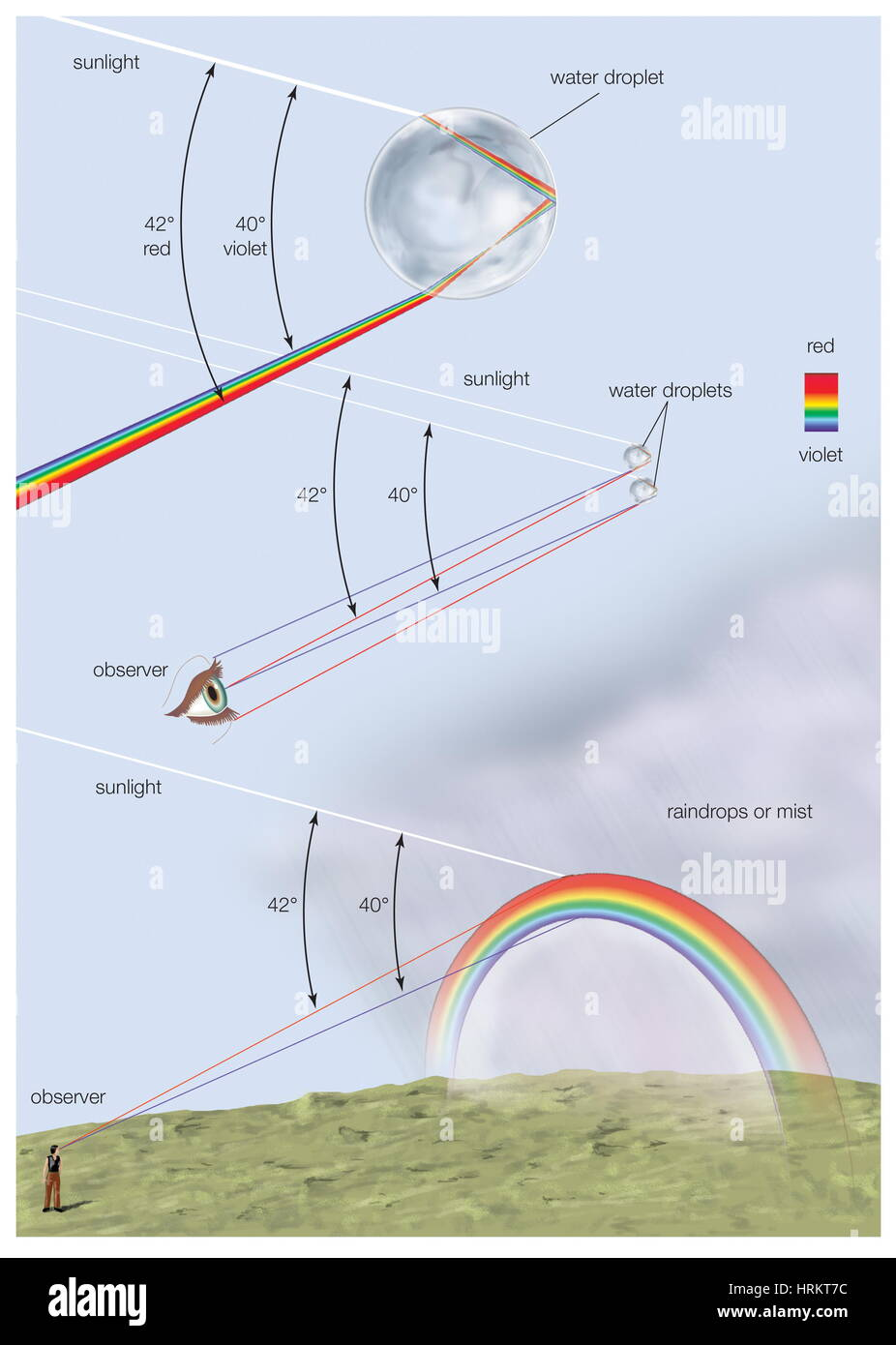 How a rainbow is formed with a diagram of reflection and how a rainbow is formed with a diagram of reflection and refraction of sunlight inside a raindrop visible spectrum visible light atmospheric pooptronica