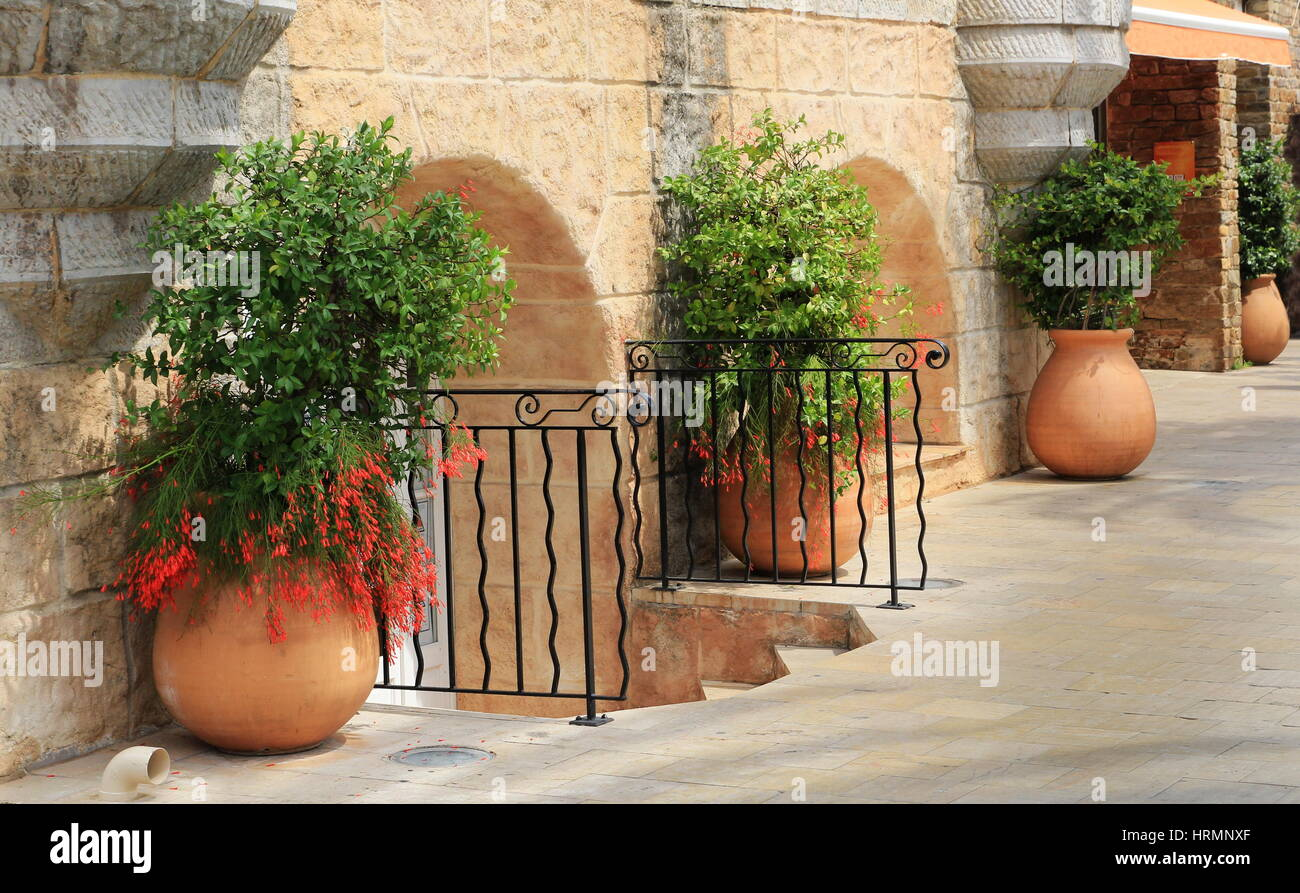 large terracotta pots with green plants against a rustic. Black Bedroom Furniture Sets. Home Design Ideas