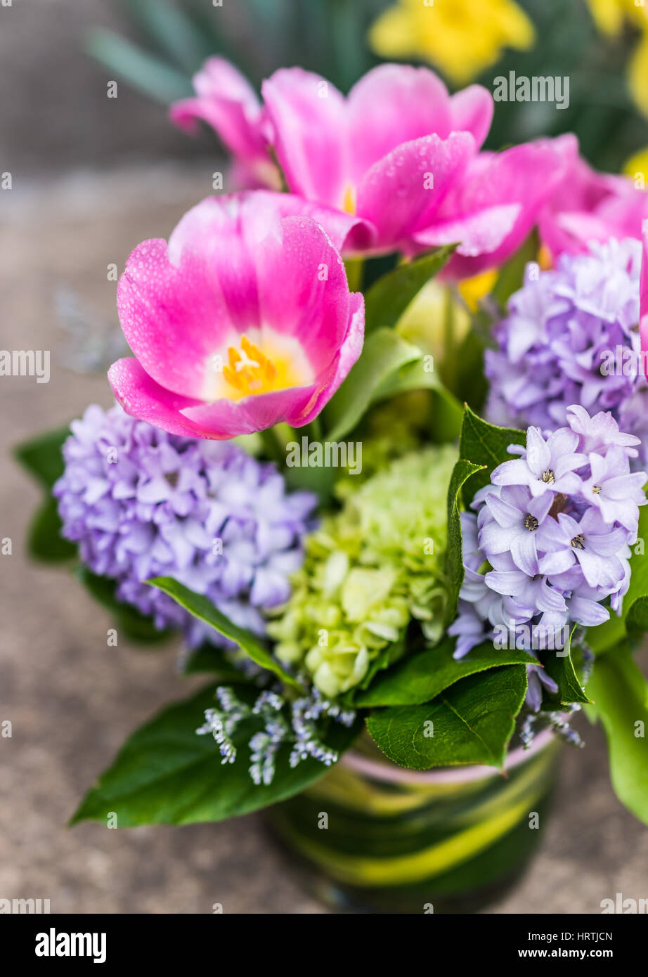 Open pink tulip bouquet with blue purple hyacinth flowers and water ...