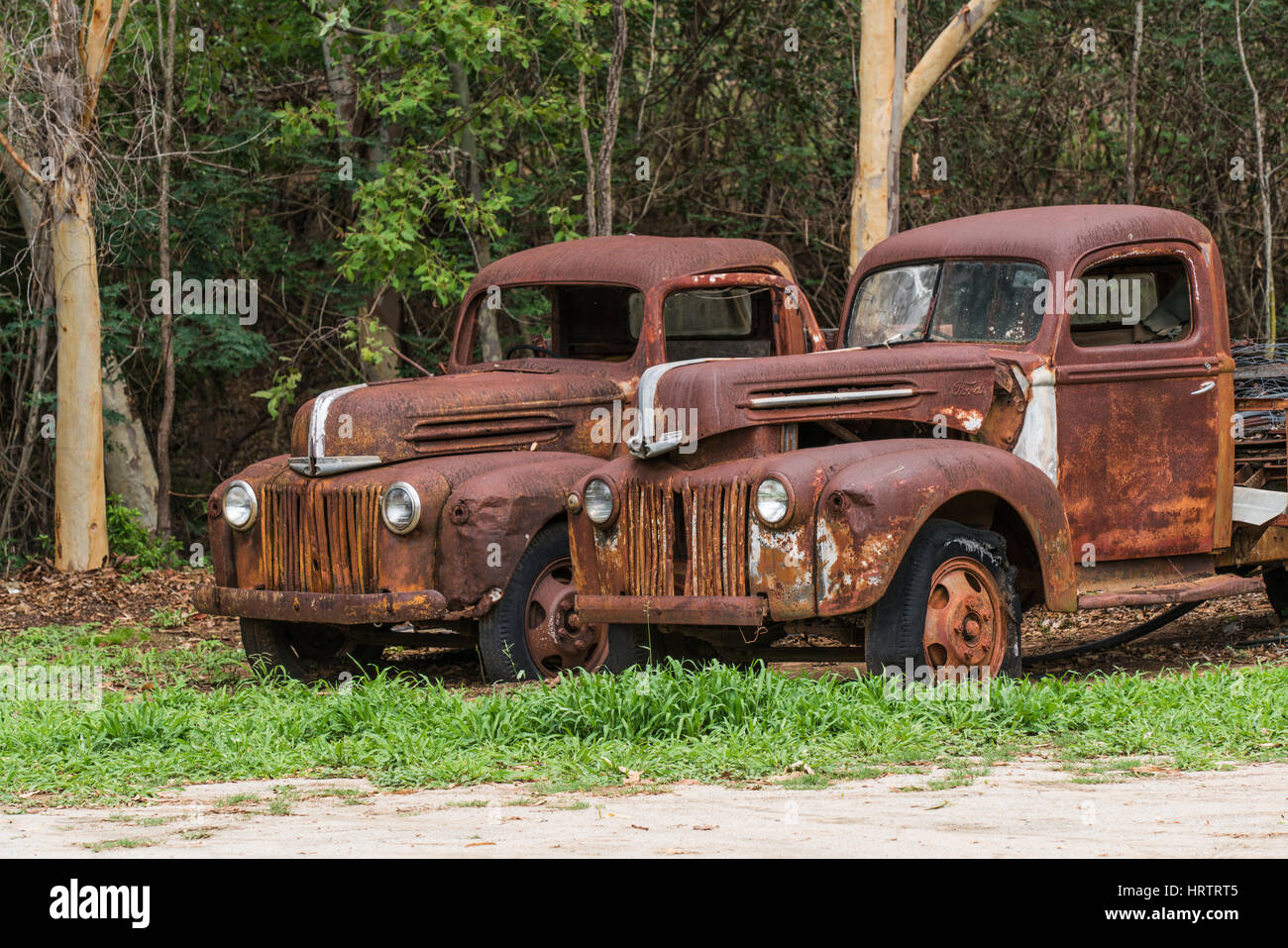 Two old abandoned rusty Ford trucks Stock Photo, Royalty ...