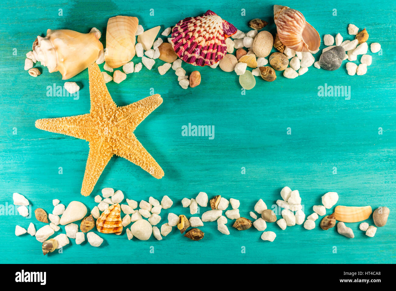 How to Pack Sea Shells for Travel