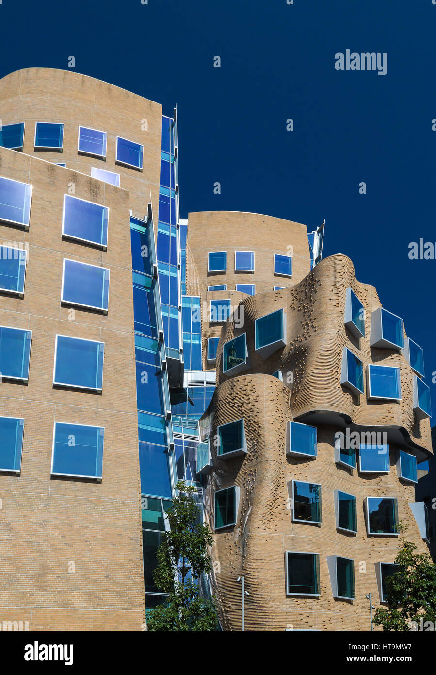 Stock Photo - The first building in Australia designed by one of the worlds most  influential architects Frank Gehry. Its named after Dr Chau Chak Wing