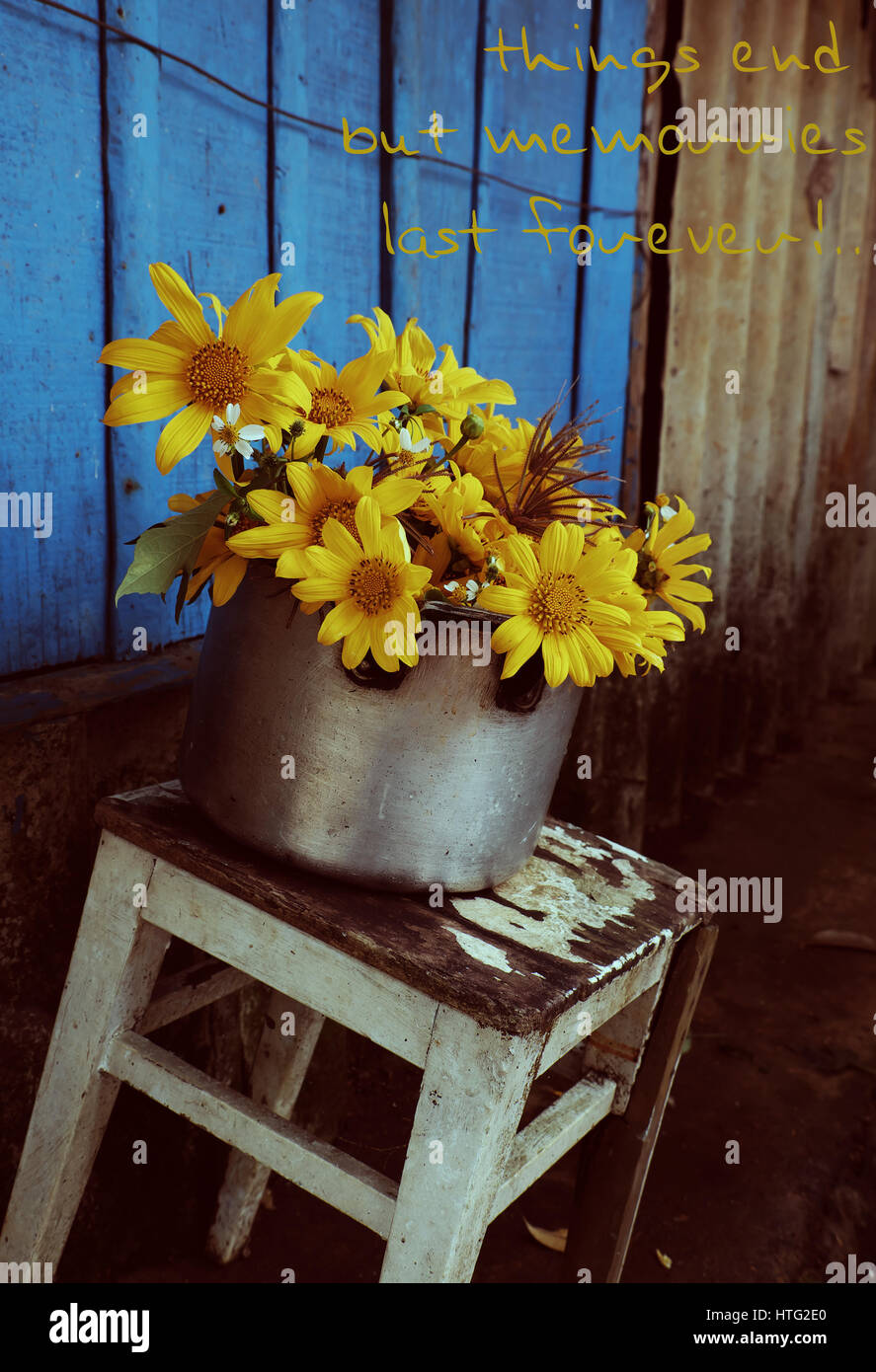 Vintage Background With Apologize For Break Up Of Love, Hurt, Sorry Text  And Missing, Concept From Wild Sunflower On Rustic Blue Wooden Background