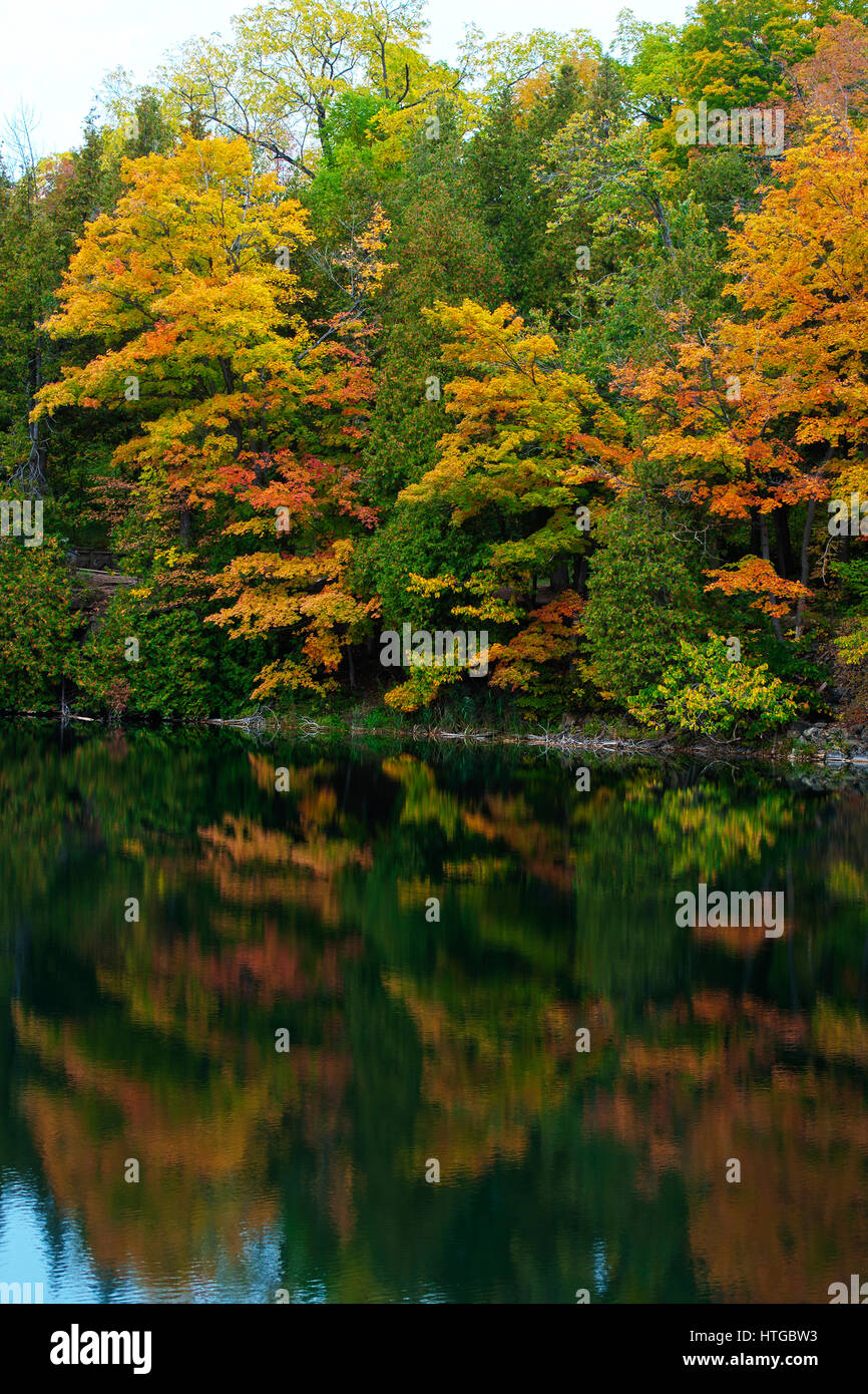 Photograph of lake reflections of maple trees showing changing fall ...