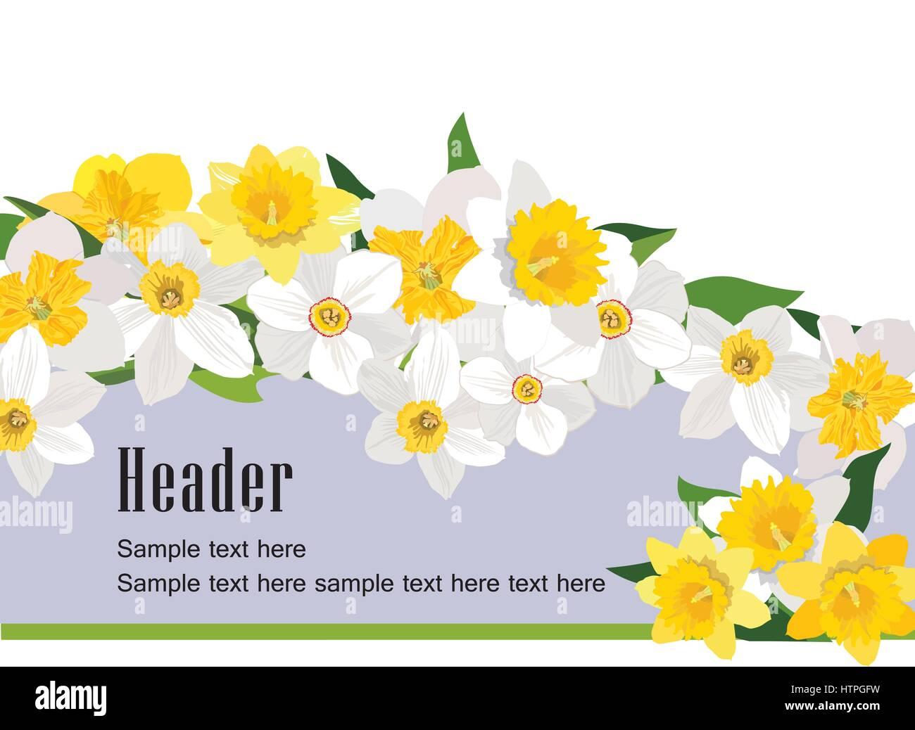 Flower Background Spring Garden Border