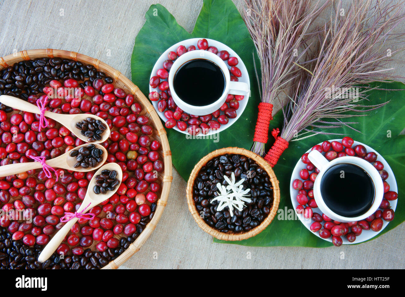 harmony concept coffee bean cup of black cafe on ripe berries roasted bean flower to decor green leaf make amazing background - Black Cafe Decor