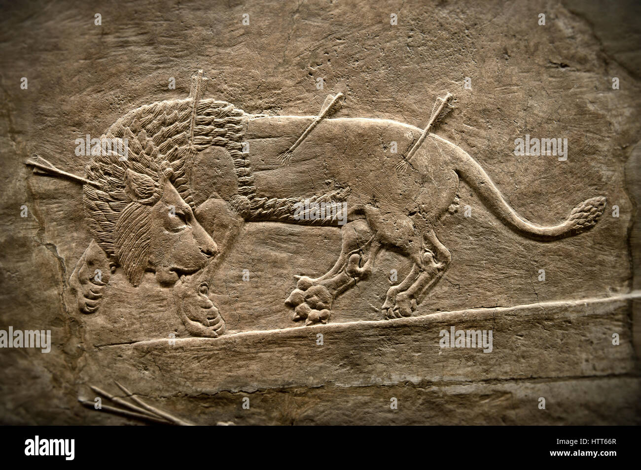 Assyrian relief sculpture panel from the lion hunt showing