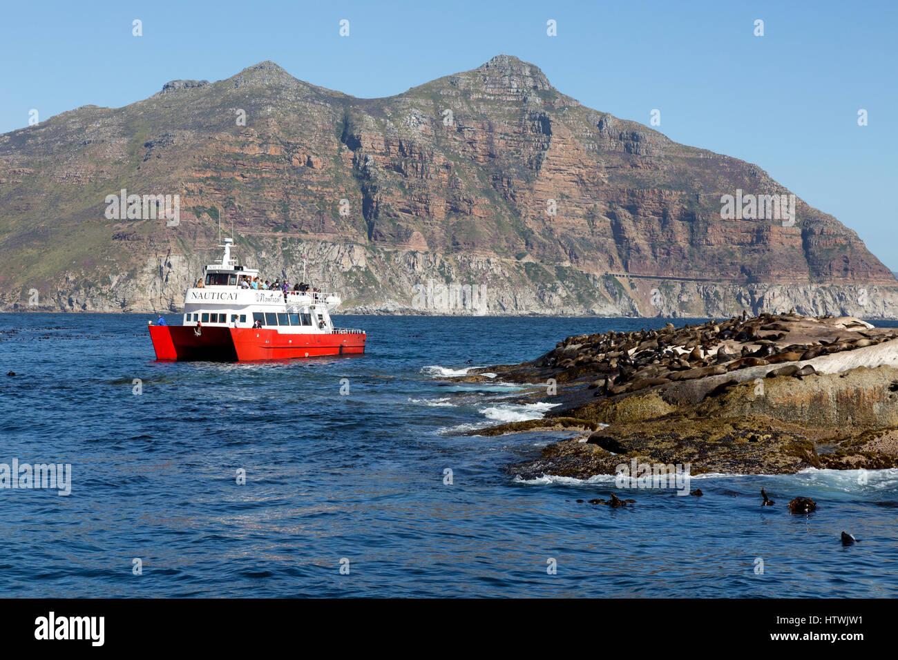 Seal Island En Francais