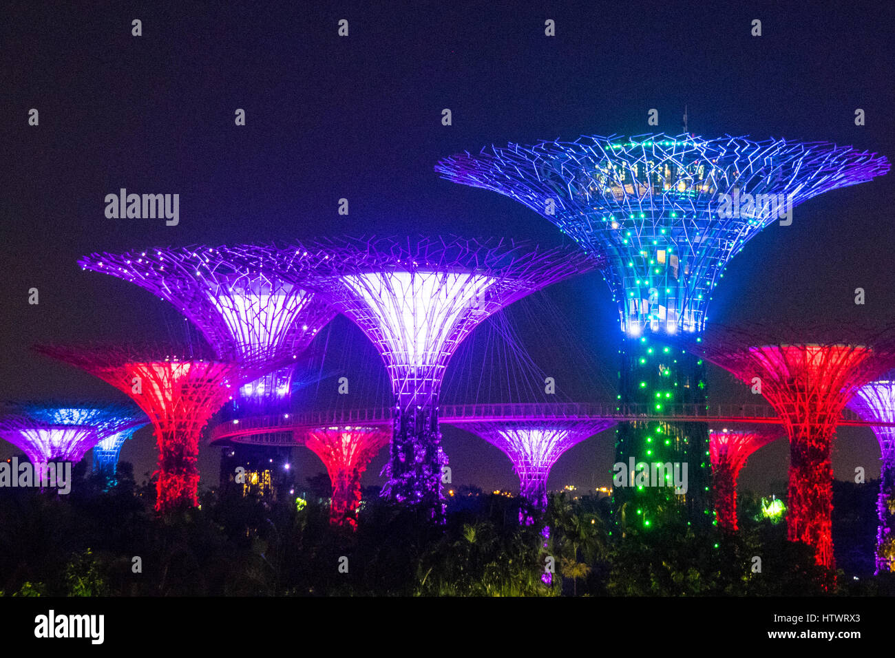 light and music show called the ocbc garden rhapsody lighting up the supertrees at the gardens by the bay marina sands singapore - Garden By The Bay Music