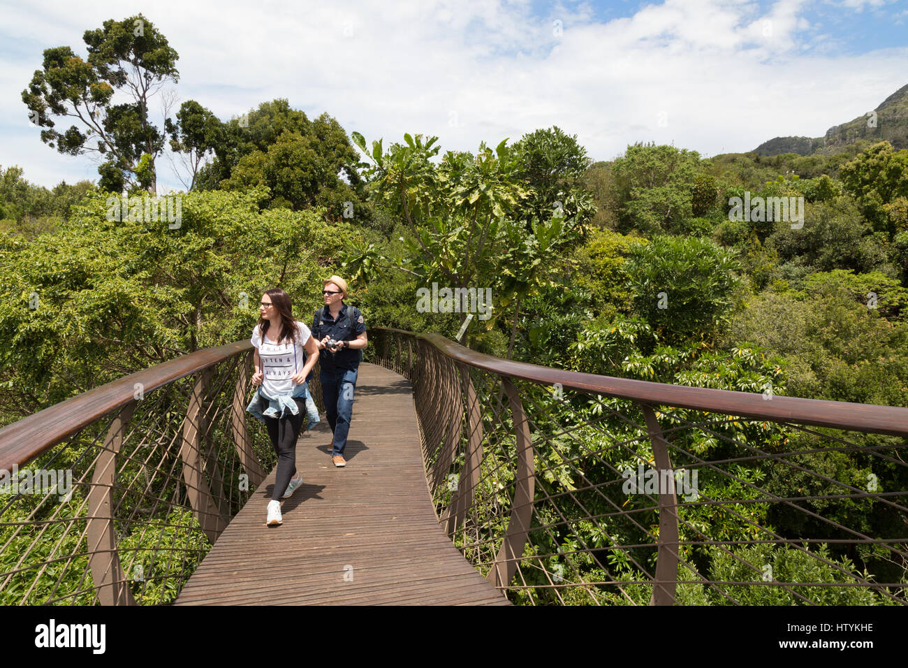 Cape Town South Africa tourists on the canopy walk Kirstenbosch National Botanical gardens Cape Town South Africa & Cape Town South Africa tourists on the canopy walk Kirstenbosch ...