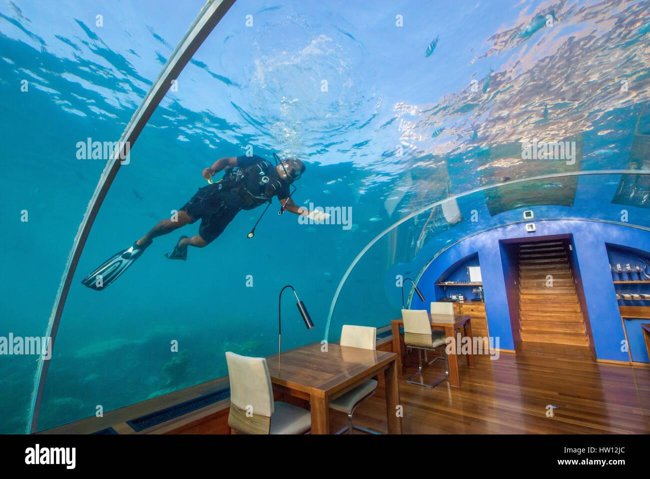 Ithaa Undersea Restaurant Maldives Underwater Resorts Www Pixshark Com Images