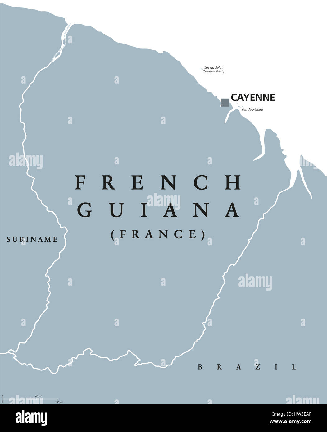 French Guiana Political Map With Capital Cayenne And Borders Stock - South america french guiana map