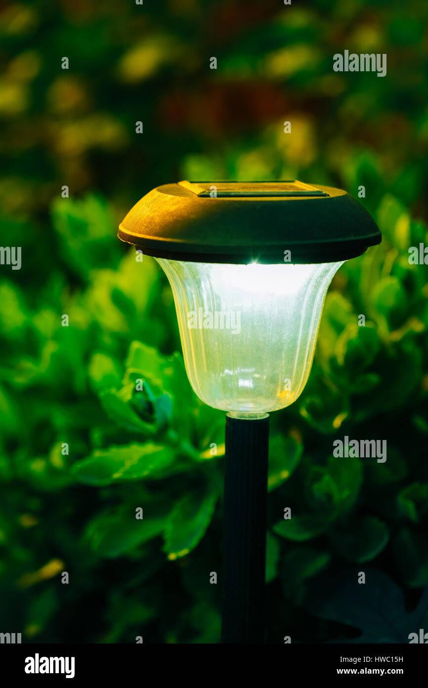 decorative small solar garden light lanterns in flower bed garden design solar powered lamp - Solar Powered Lanterns