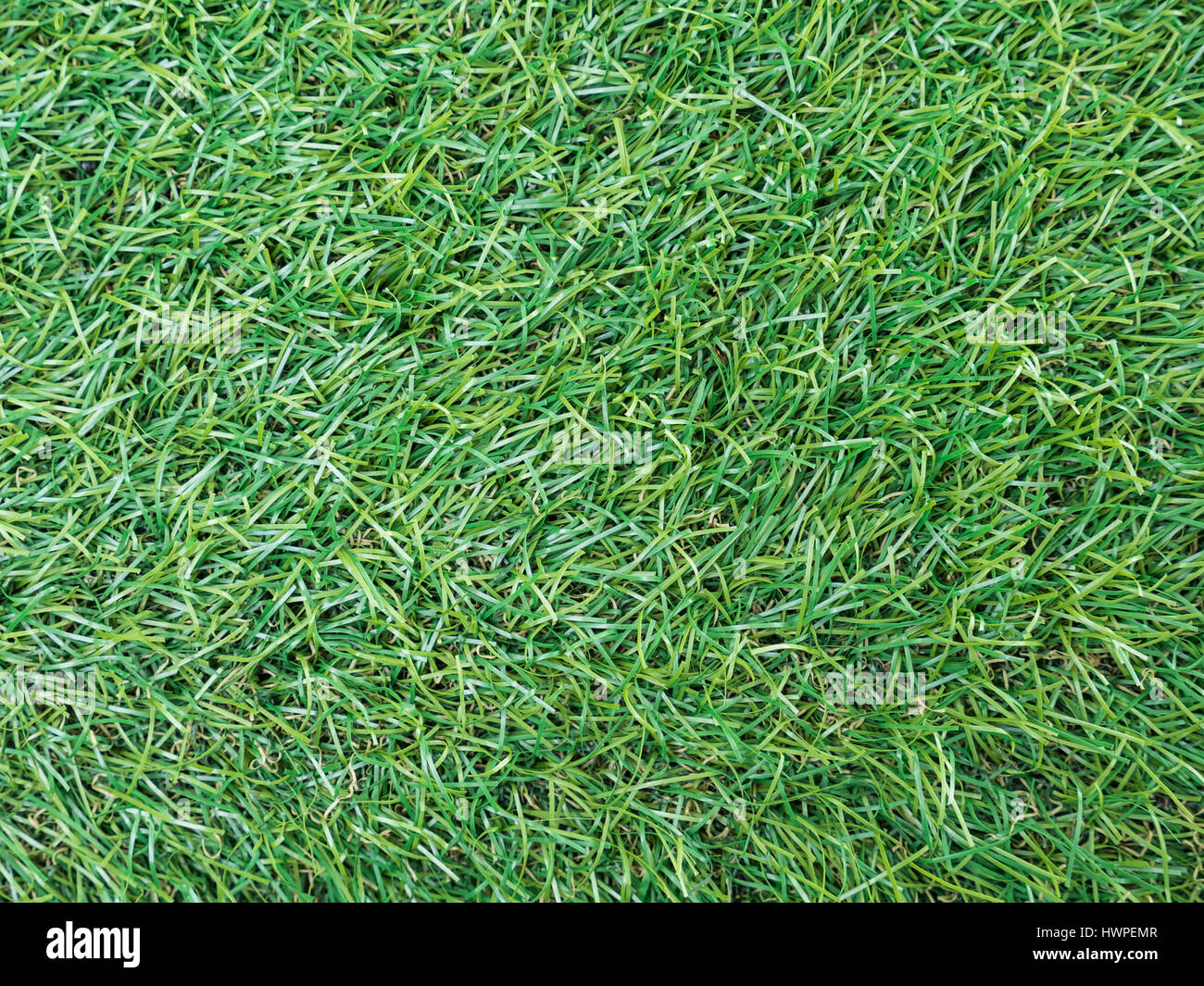 fake grass texture. Background Texture With Fake Grass Top View