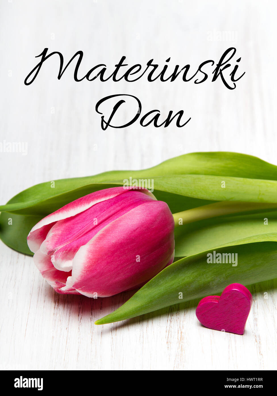 Slovenian mothers day card with words materinski dan mothers slovenian mothers day card with words materinski dan mothers day tulip flower and small heart on white wooden background kristyandbryce Choice Image