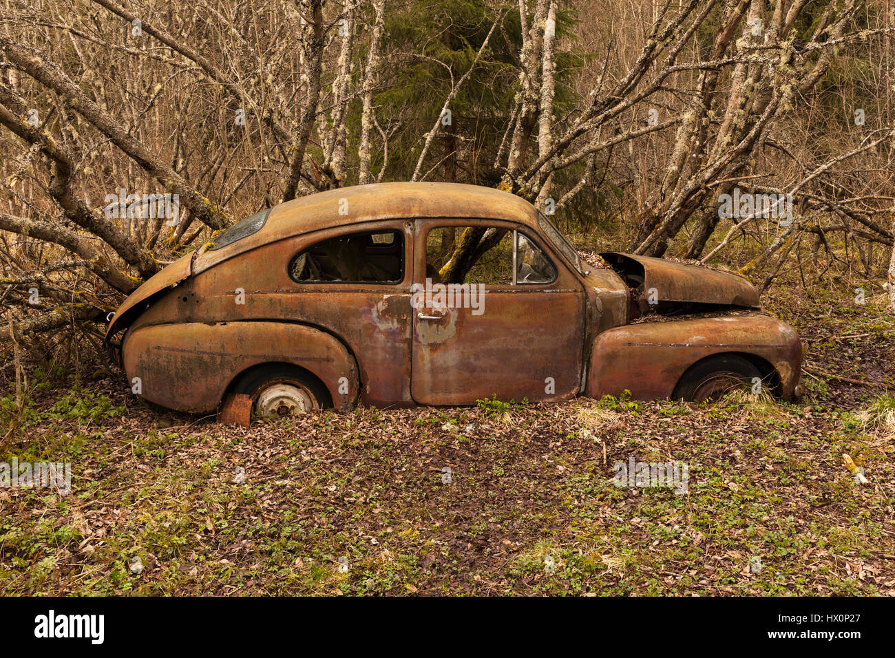 Old Fashioned Junkyard