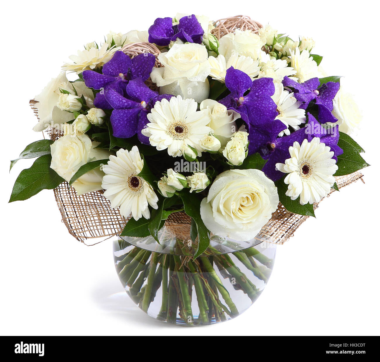 bouquets purple white orchid flowers stock photos  bouquets, Beautiful flower